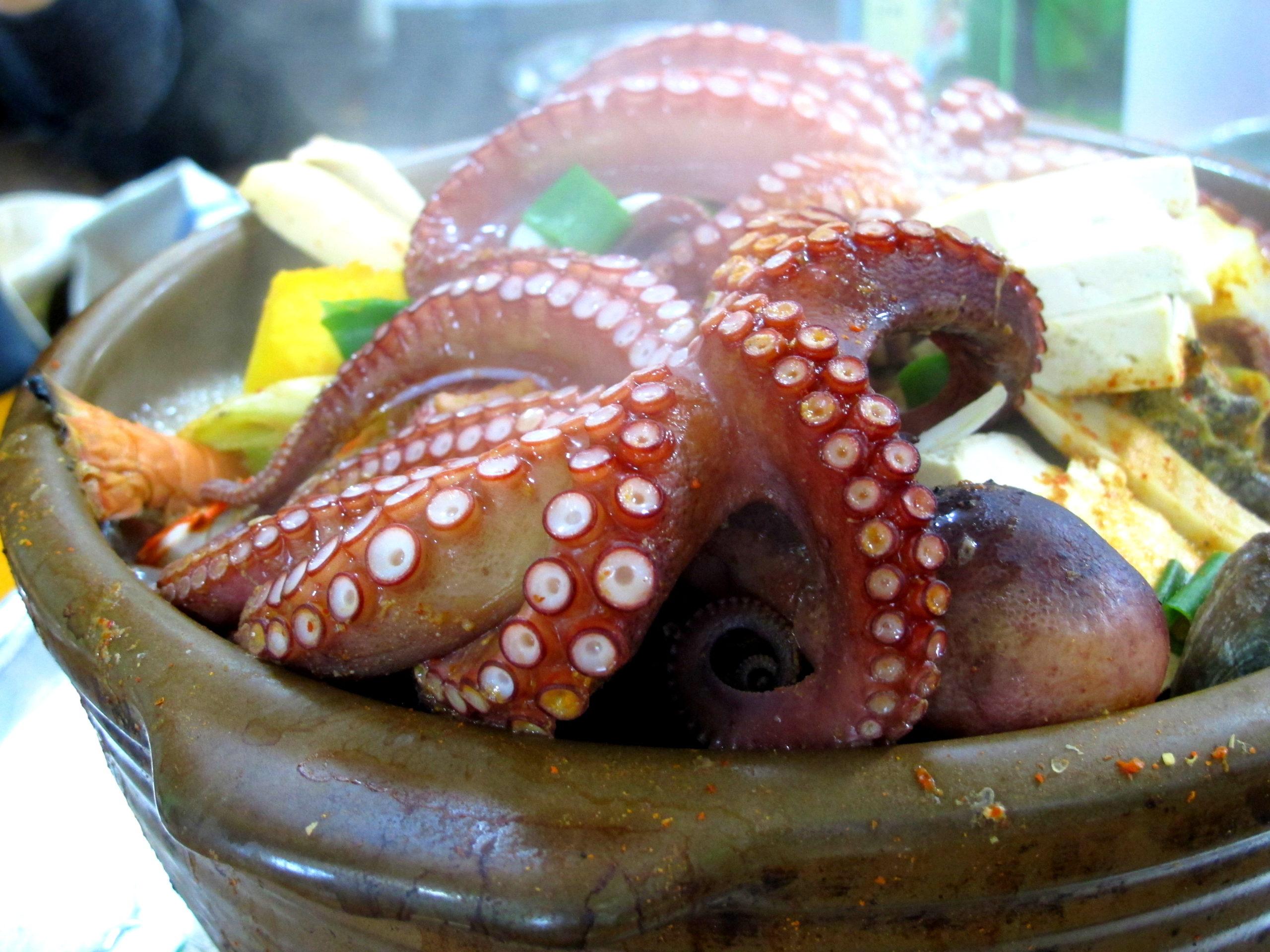 Korean Eating A Fishy Feast 해물탕